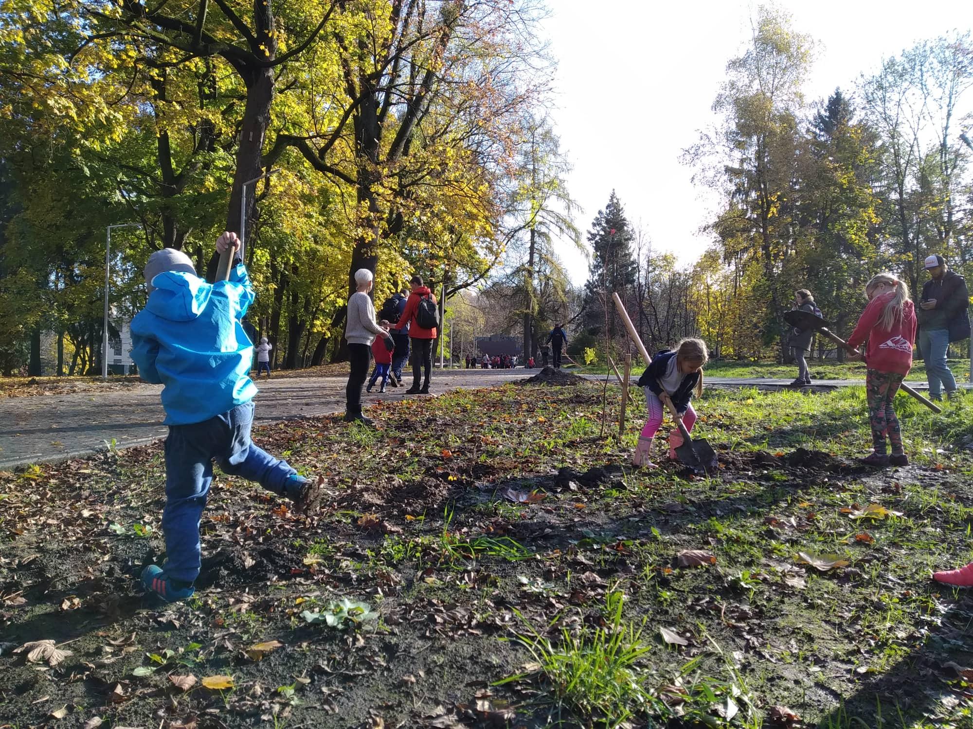 У Парку Культури – 7 нових дерев і кущів